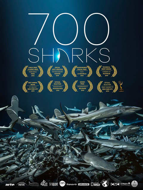 "Poster of ""700 Sharks"""